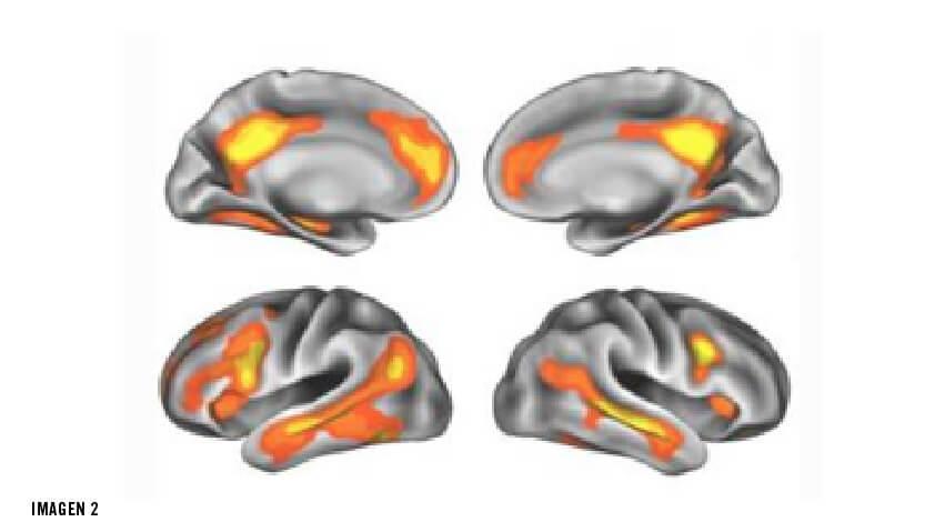 Cómo cambia el cerebro con la maternidad